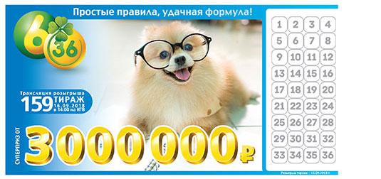 Лотерея 6 из 36 тираж 159 с рыжей собакой