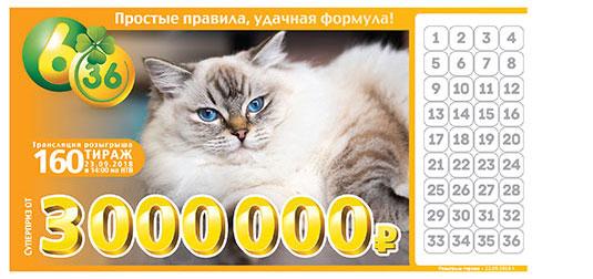 Лотерея 6 из 36 тираж 160 с персидской кошкой