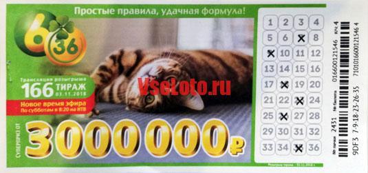 Лотерея 6 из 36 тираж 166 с кошкой