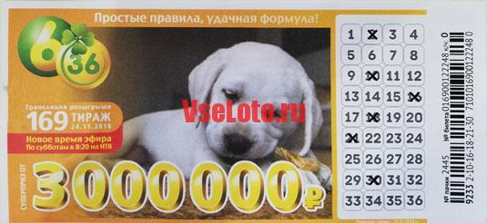 Лотерея 6 из 36 тираж 169 с белым щенком