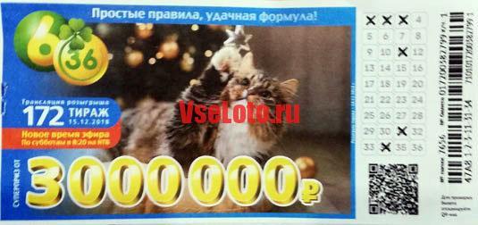 Лотерея 6 из 36 тираж 172 с кошкой у ёлки